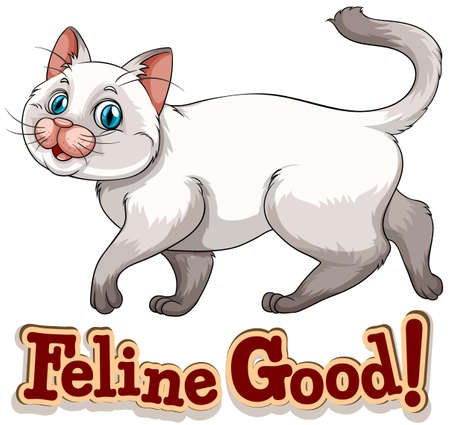 Cute little siamese cat with short hair