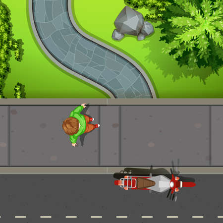 arbre vue dessus: Vue aérienne du trottoir illustration Illustration