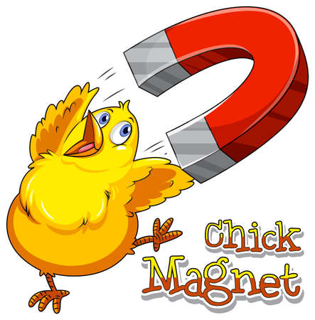 figurative: English saying chick magnet with picture Illustration