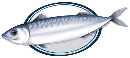 salmon dinner: Sardine fish on a plate illustration Illustration