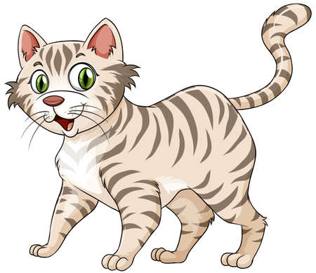cat illustration: Tiger pattern furry cat alone on white background