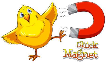 pulling: Magnet pulling little chick closer