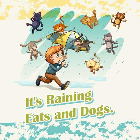 raining: Está lloviendo gatos y perros ilustración