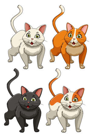 domestic animals: Yong cats in four colours illustration