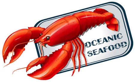 lobster: Lobster seafood can concept illustration Illustration