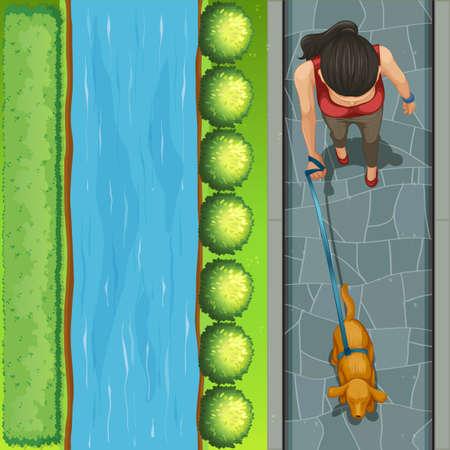 dog walking: Woman walking a dog illustration