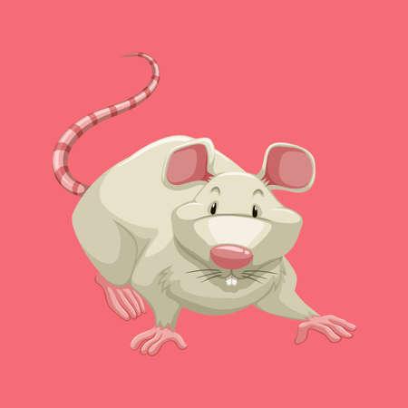 pets background: White rat on pink illustration