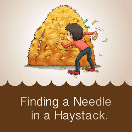 finding: Finding needle in haystack illustration Illustration