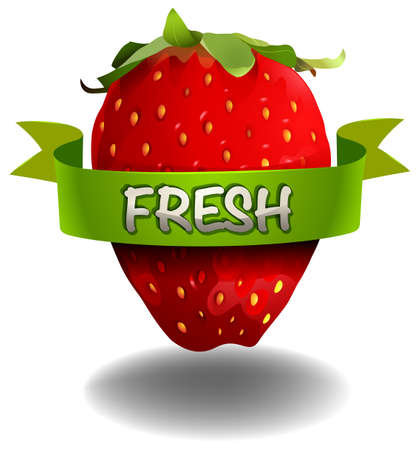 raw material: Strawberry with FRESH banner  illustration Illustration