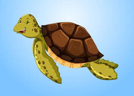 schildkroete: Turtle Schwimmen im Meer Illustration