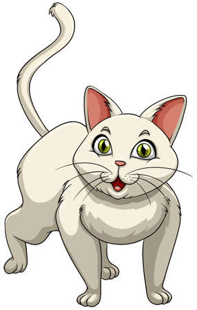 green eyes: White cat with green eyes illustration Illustration