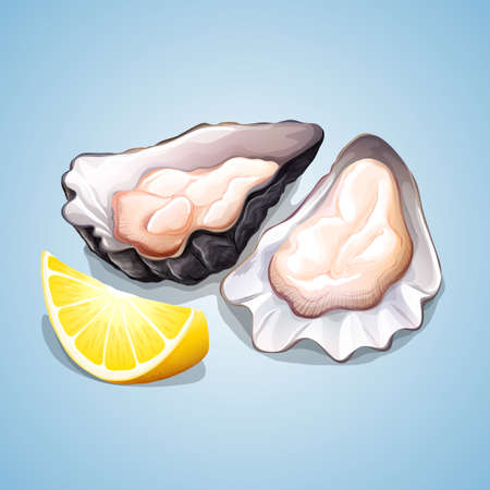 supper: Oyster with a piece of lemon illustration Illustration