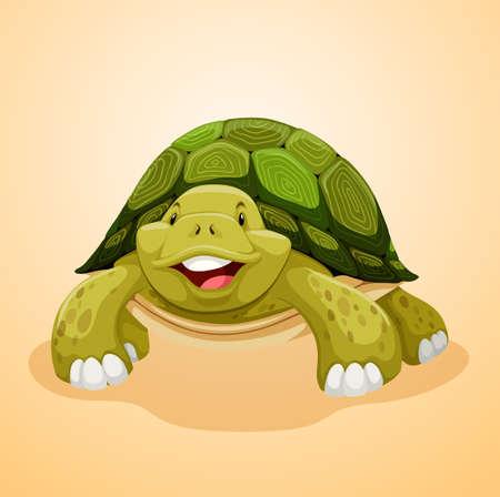 green cute: Cute green turtle smiling illustration Illustration