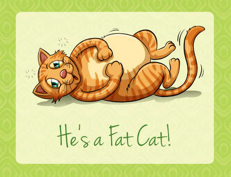 lying on his tummy: Fat cat lying on its back illustration