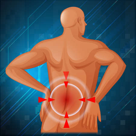 focus: Spine pain in the back illustration Illustration