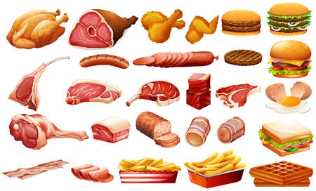 burger and fries: Different kind of meat and food illustration