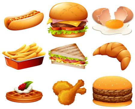 hotdog sandwiches: Different kind of fastfood illustration