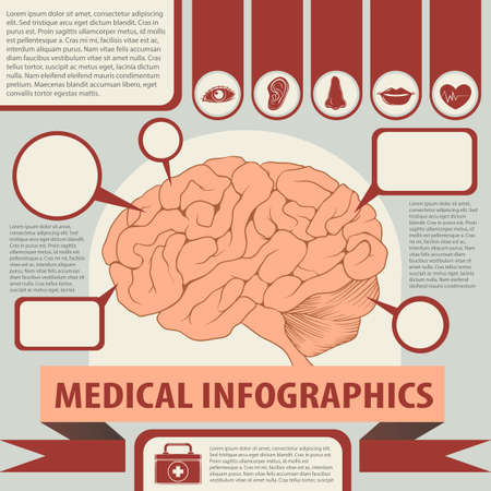 brain illustration: Medical infographics with brain and text illustration Illustration