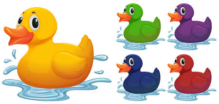 duck toy: Duck toy in different color illustration