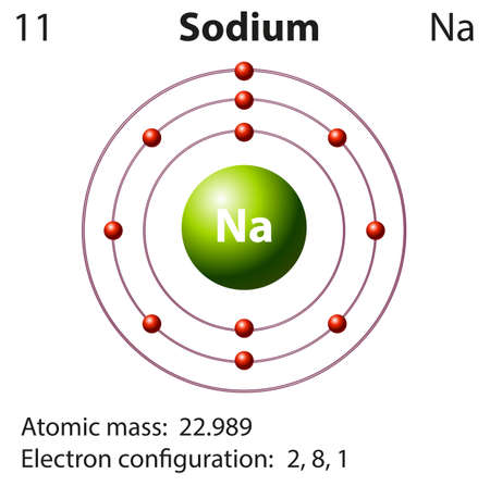 atomo: Representación Esquema de la ilustración elemento de sodio Vectores