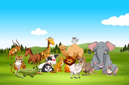 animals in the wild: Wild animals in nature illustration
