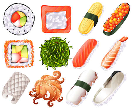 raw egg: Different kind of sushi roll illustration Illustration