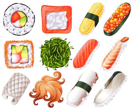 egg roll: Different kind of sushi roll illustration Illustration