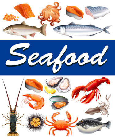 squid: Different kind of seafood and text illustration