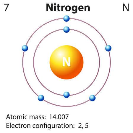 nitrogen: Diagram representation of the element nitrogen illustration Illustration