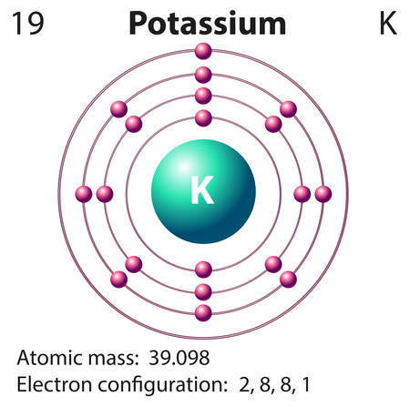 Diagram representation of the element potassium illustration