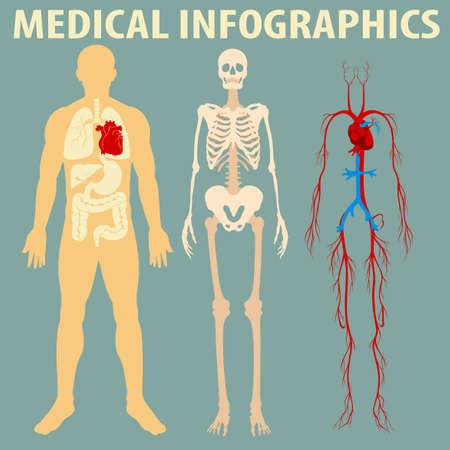 인체 그림의 의료 인포 그래픽 일러스트