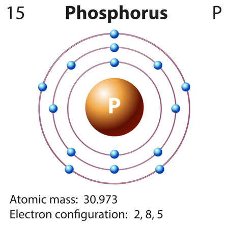 electron shell: Diagram representation of the element phosphorus illustration