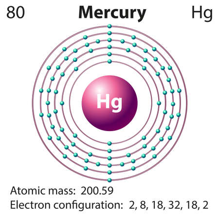 electron shell: Diagram representation of the element mercury illustration