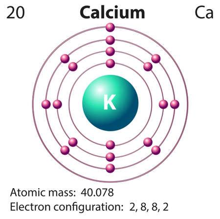 atomo: Representación Esquema de la ilustración elemento clacium Vectores
