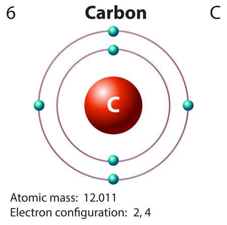 electron shell: Diagram representation of the element carbon illustration Illustration