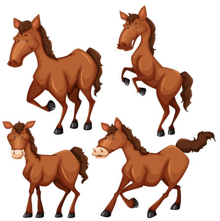 carnivores: Brown horse in four different poses illustration