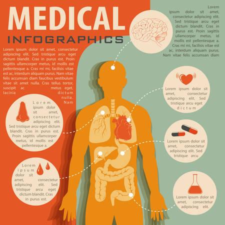 partes del cuerpo humano: Infografía Médico con la ilustración de la anatomía humana