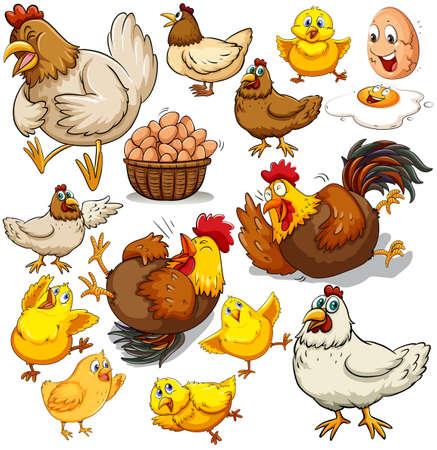 チキンと新鮮な卵の図  イラスト・ベクター素材