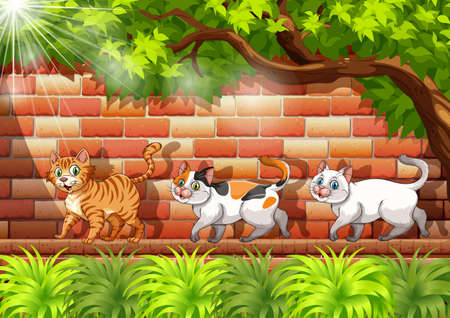 Three cats walking on the wall illustration