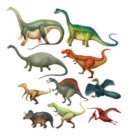 collection: Different type of dinosaurs illustration