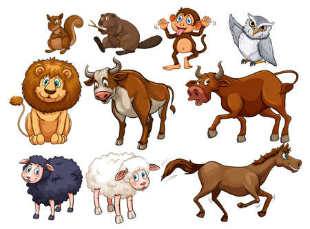 Wild animals in various types illustration