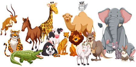 Different kind of wild animals illustration. Stock Photo