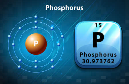 frail: Flashcard of phosphorus atom illustration Illustration