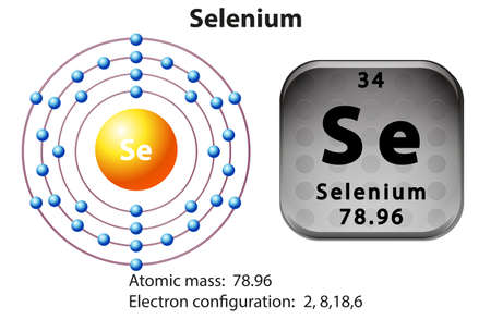 electron: Symbol and electron diagram for Selenium illustration Illustration