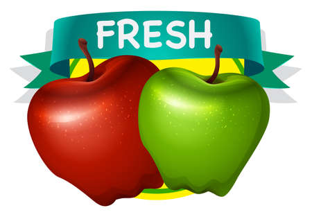 red apple: Fresh green and red apple illustration