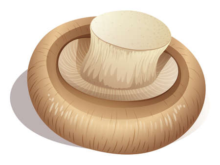 raw material: Fresh mushroom on white illustration Illustration