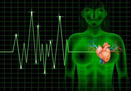 human vein heartbeat: Heartbeat of human and graph illustration Illustration