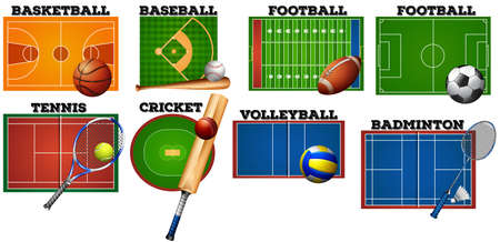 the equipment: Sport courts and equipment illustration Illustration