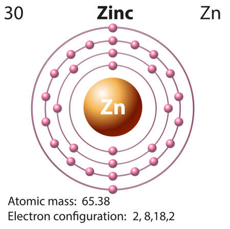 Symbol and electron diagram for Zinc illustration Illustration