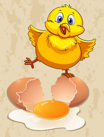 raw egg: Little chick and raw egg illustration